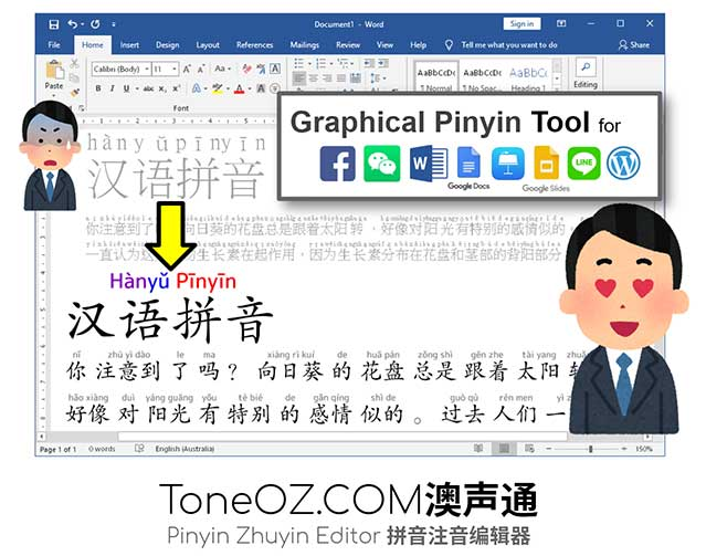 Pinyin on Chinese Characters in Microsoft Word